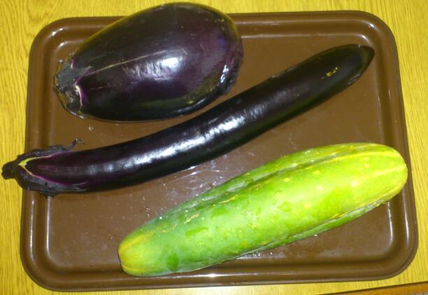 茄子ときゅうり 2